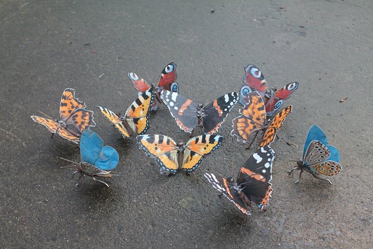 john-brown-green-hand-group-butterflies
