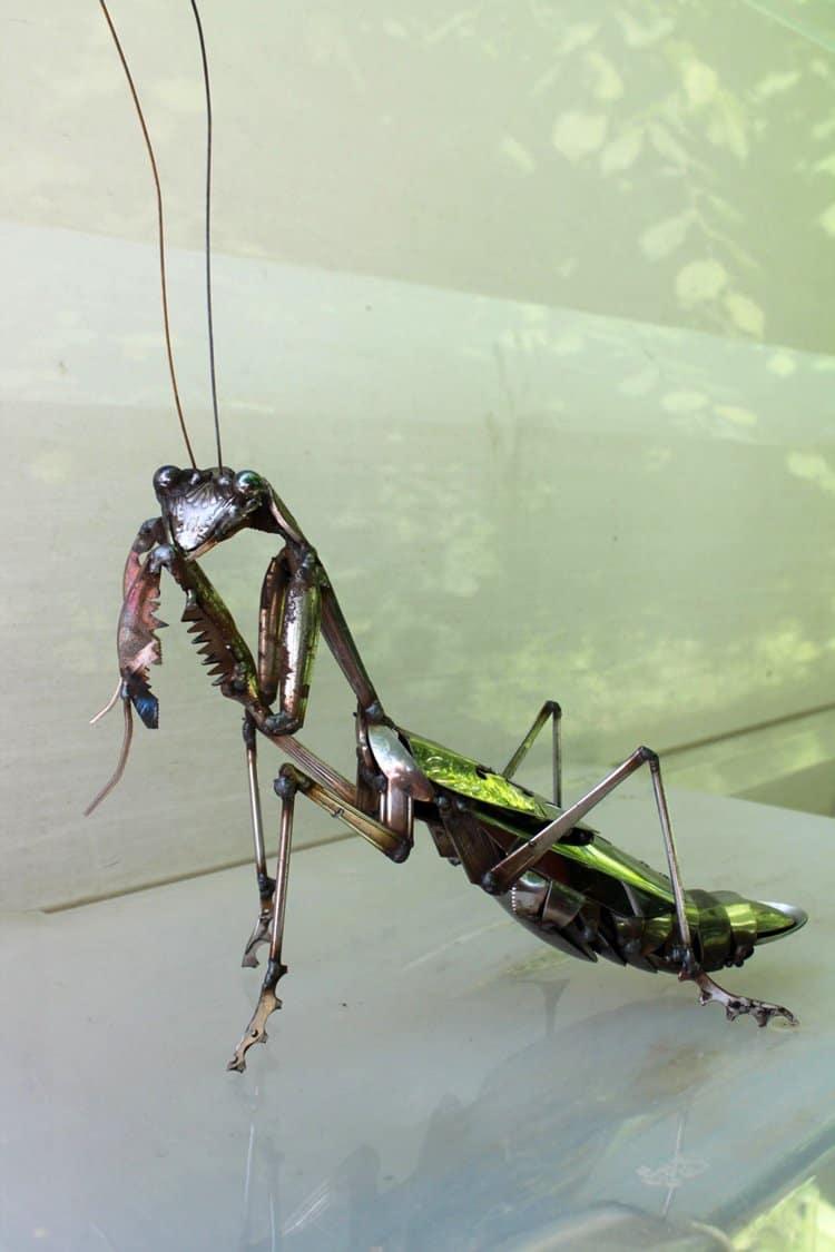 john-brown-green-hand-mantis-full