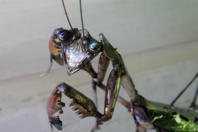 john-brown-green-hand-mantis