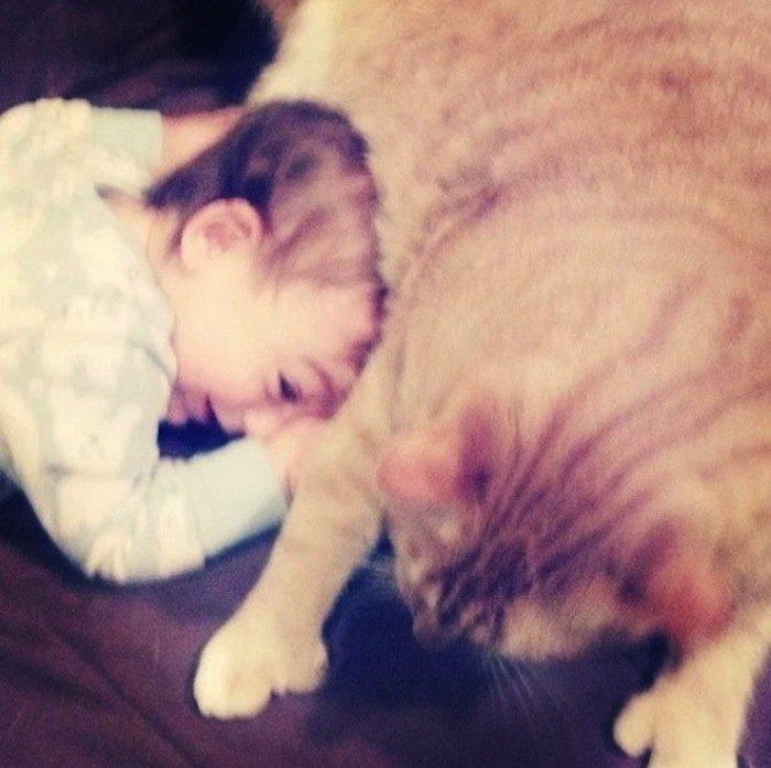larry-cuddle