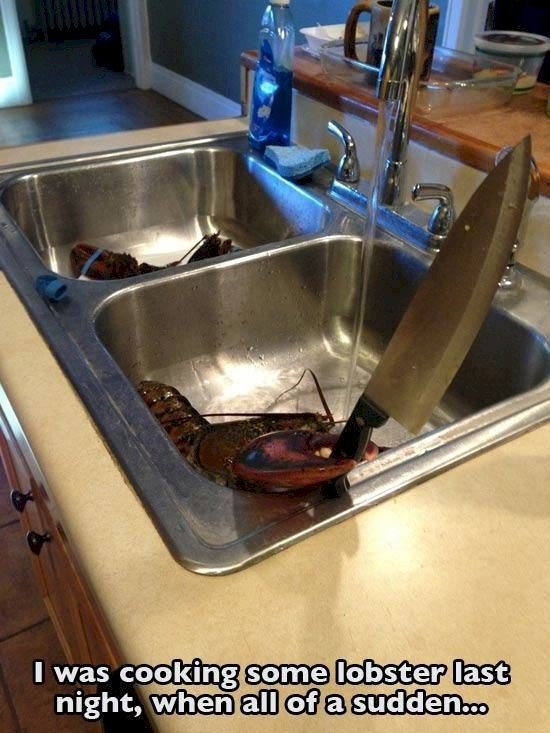 lobster holding knife