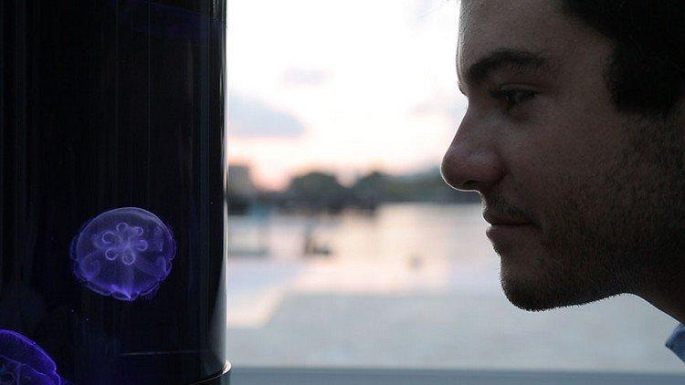 man watching jellyfish