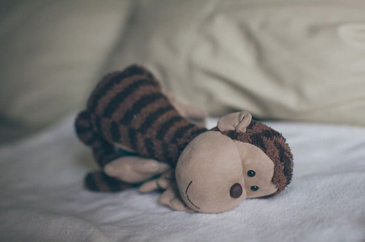 monkey laying at angle
