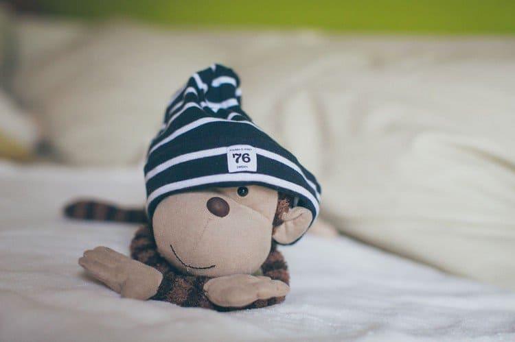 monkey looking hat
