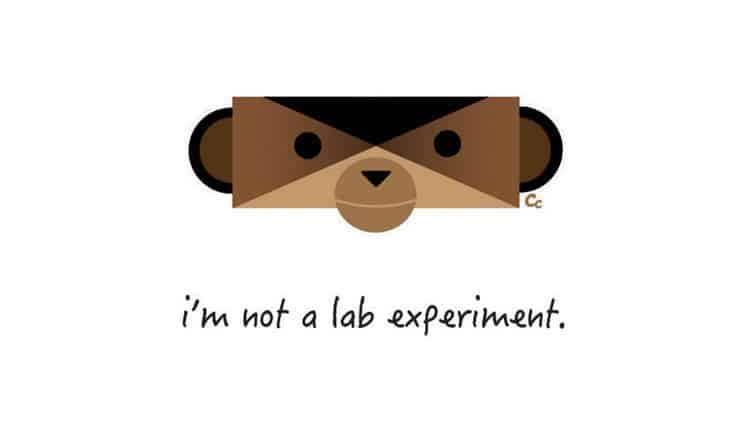 monkey not lab experiment