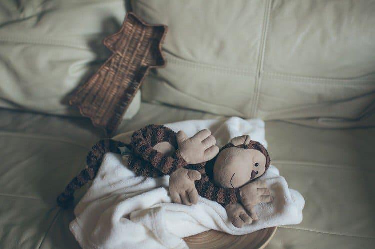 monkey on bed