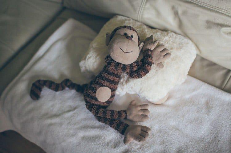 monkey on pillow