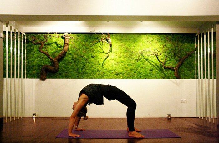 moss-yoga