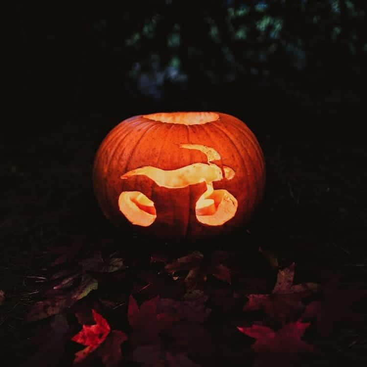 motorbike-pumpkin