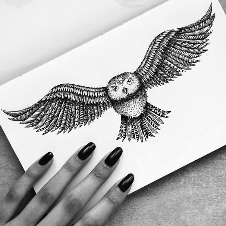 pavneet-owl