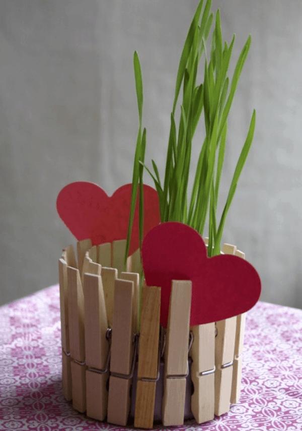 pegs-pot-plant