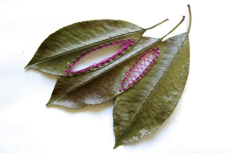 pink embroidered leaf art