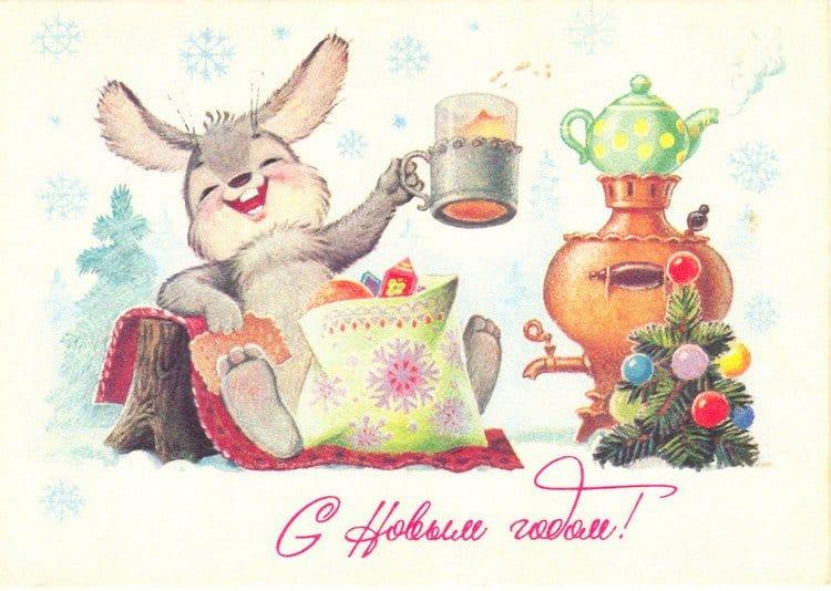 rabbit drink card