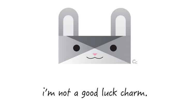 rabbit not charm
