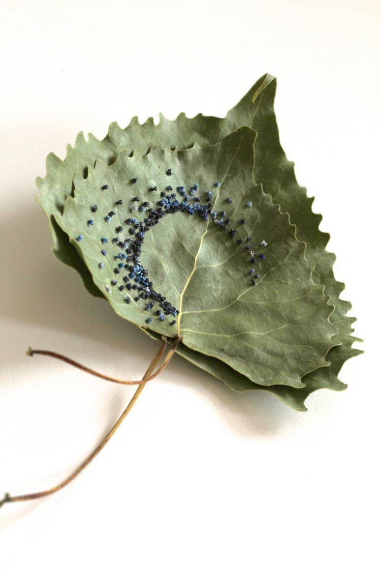 semi circle embroidered leaf art