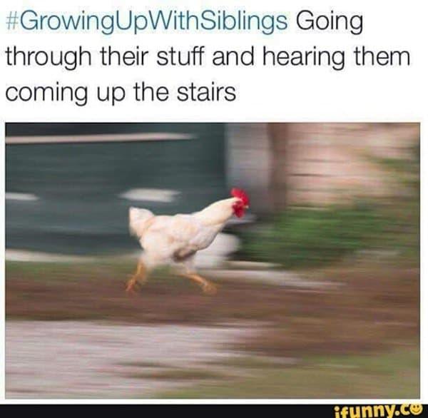 sib-chicken