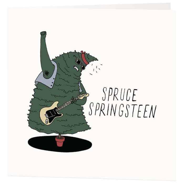 spruce springsteen