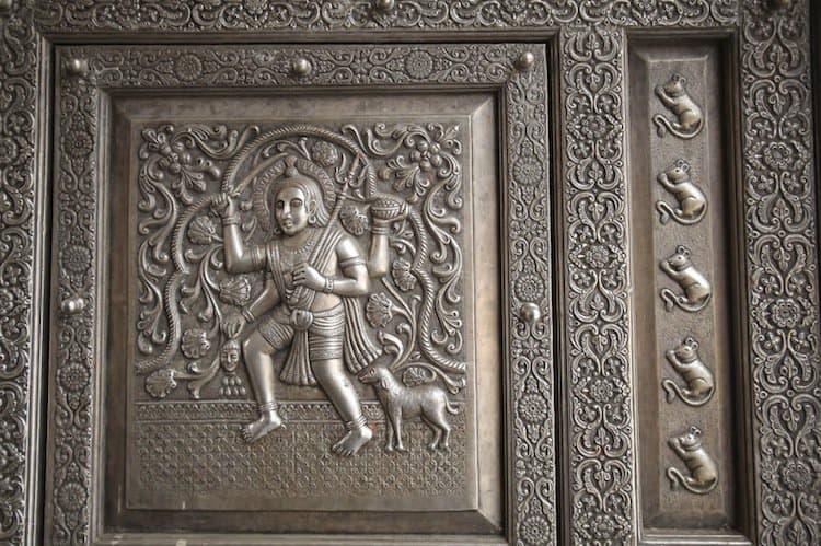 temple-rat-images