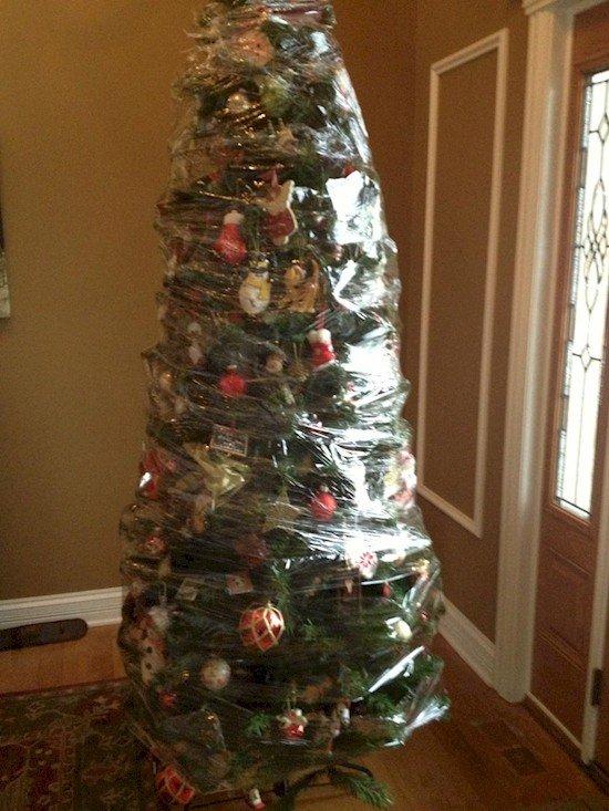 tree saran wrap