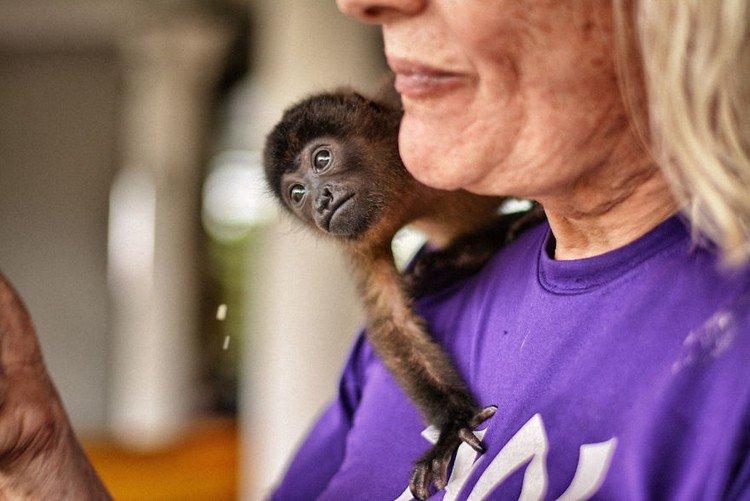 woman monkey