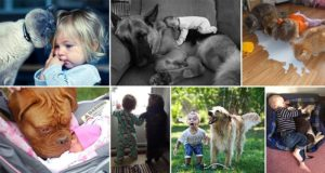 Adorable Children With Animals Pets 1