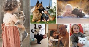 Adorable Children With Animals Pets 2