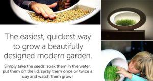 Grasslamp Miniature Garden Table Lamp