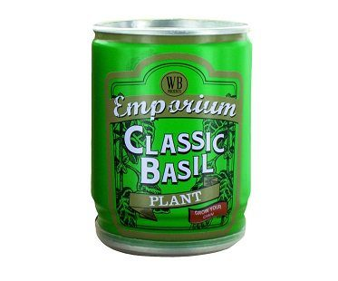 Grow Your Own Basil Plant tin