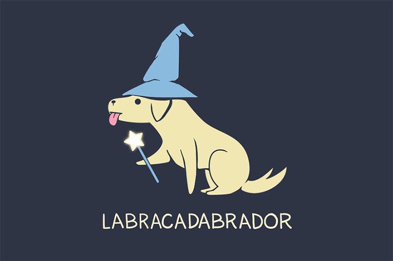 Labracadabor