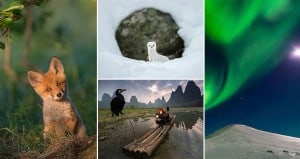 National Geographic Photographs 2015