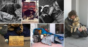 Unconditional Love Homeless Dogs Owner