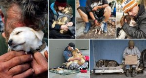 Unconditional Love Homeless Dogs Owners