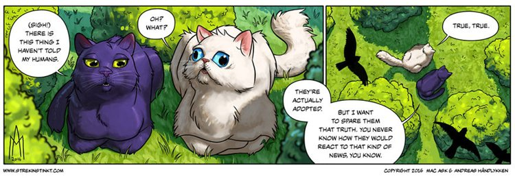 a-selection-of-cat-themed-strips-from-our-comic-4am-humans