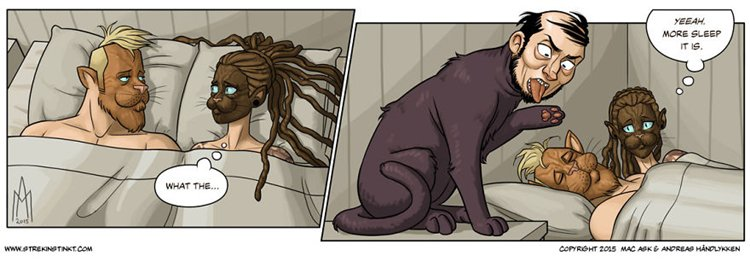 a-selection-of-cat-themed-strips-from-our-comic-4am-sleep
