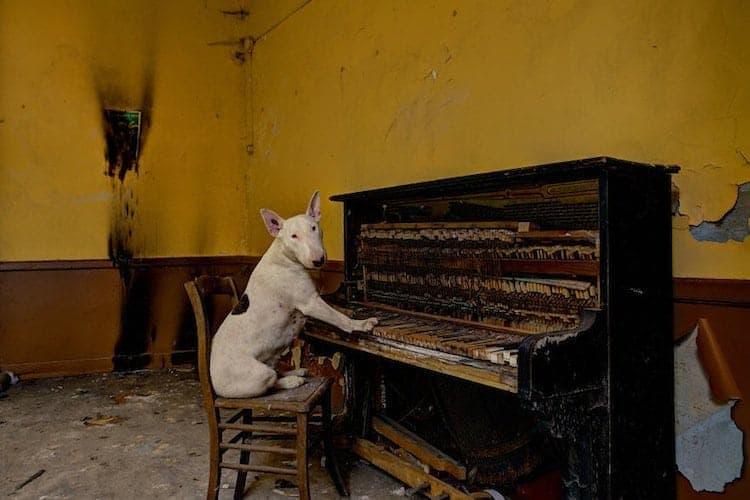 abandon-piano