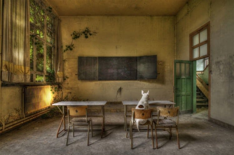 abandon-school