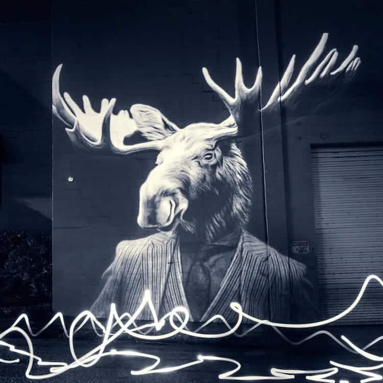 animals-moose-suit