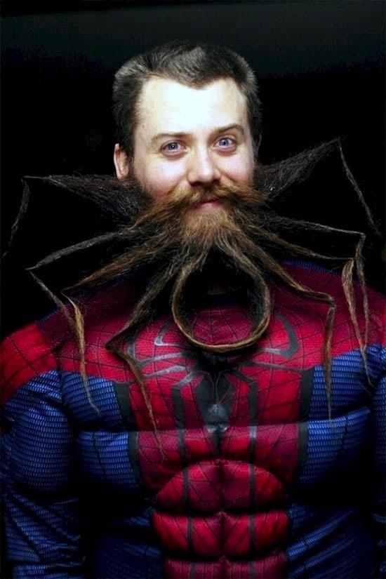 beard-spider