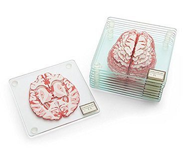 brain specimen coasters glass