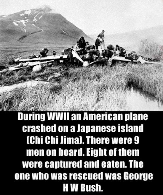 Selama Perang Dunia ke-2, sebuah pesawat Amerika terjatuh di sebuah pulau Jepang (Chi Chi Jima). Ada 9 orang penumpang. 8 di antaranya ditangkap dan dimakan. 1 orang yang selamat tersebut adalah George HW Bush.