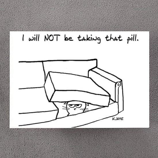 cards-for-cat-lovers-pill