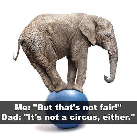 circus joke