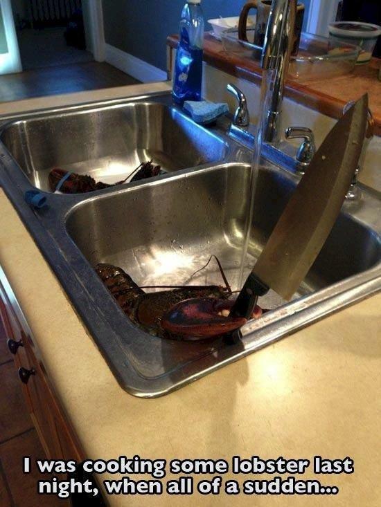 cook-lobster