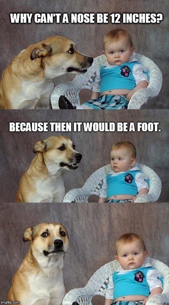dog baby joke