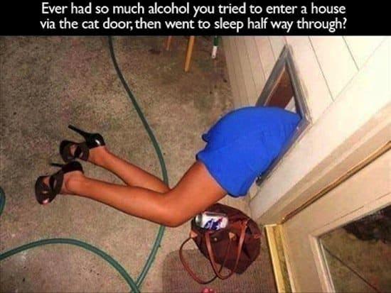 drunk-cat-door