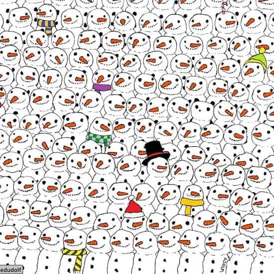 dudolf-panda-next