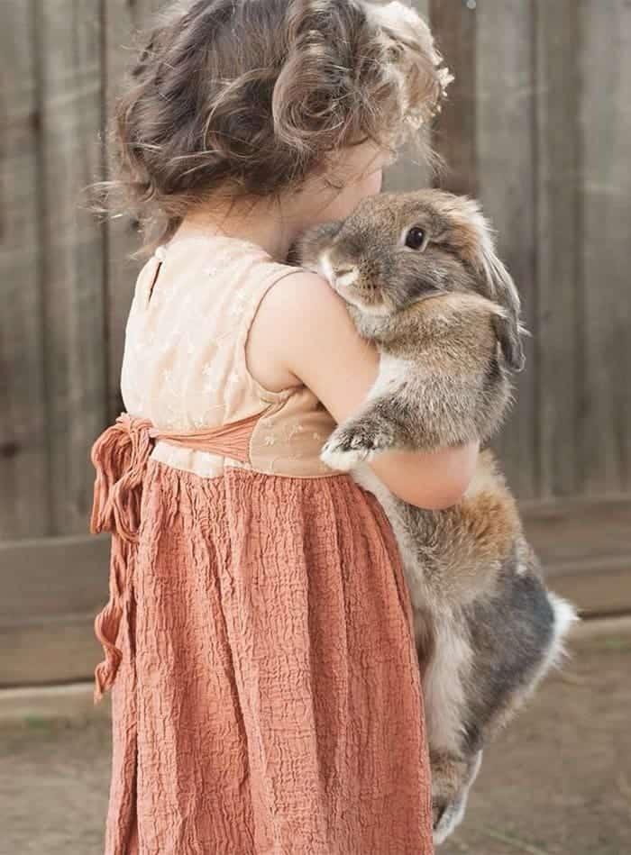 every-kids-need-pets-bunny