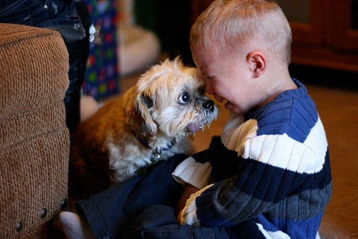 every-kids-need-pets-cry