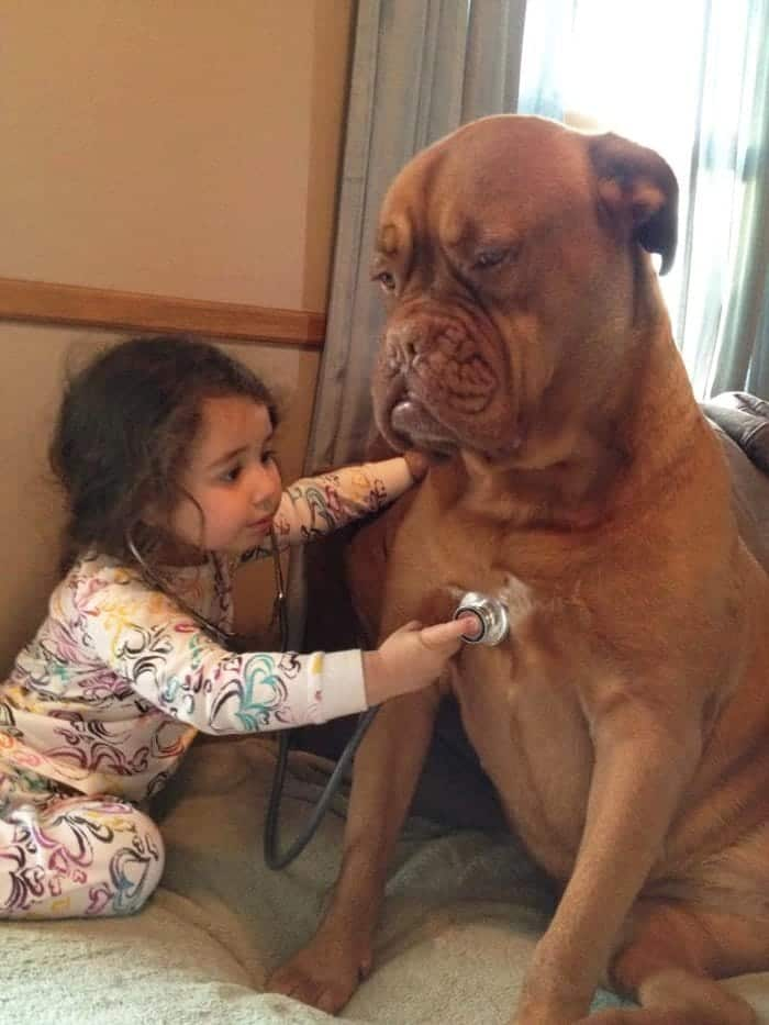 every-kids-need-pets-doctor