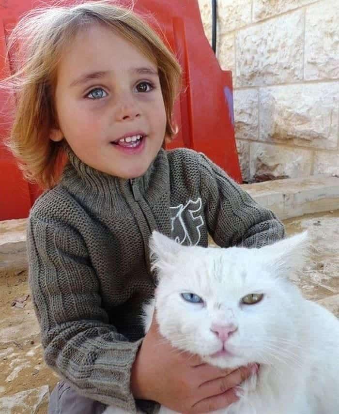 every-kids-need-pets-eyes